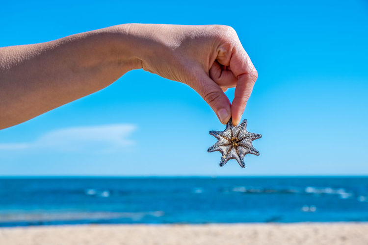 Cropped hand of person holding starfish against sky
