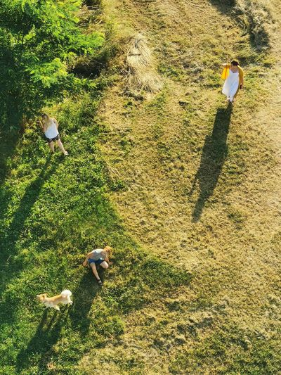 High angle view of family with dog at park