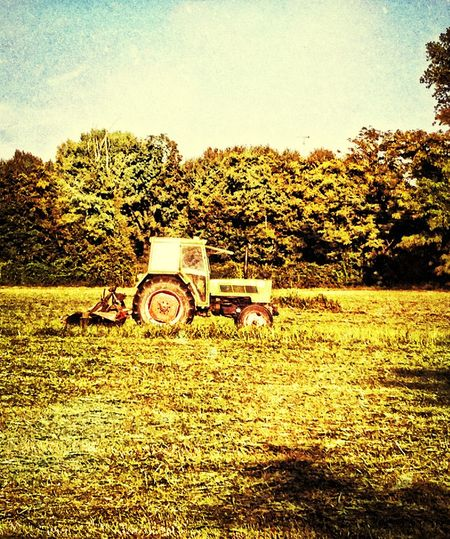 Field Whet Hdr_Collection EyeEm Best Edits