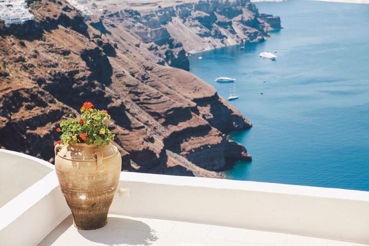 Plants in vase against rock formation at santorini