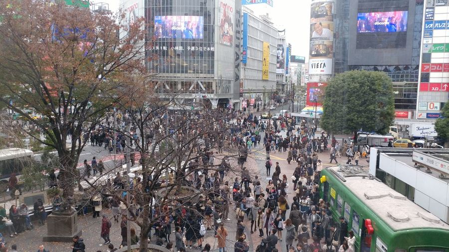 Large Group Of People Building Exterior Crowd City Street Built Structure People People And Places Shibuya, Tokyo People Crossing Shibuya,Tokyo Shibuya Shibuyascramble  Shibuya Japan Shibuya Crossing High Angle View