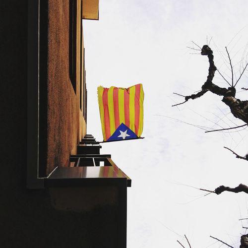 l'anhel de llibertat. Flag Independencia Catalunya Catalonia Is Not Spain Flying Sky Flag Pole National Icon