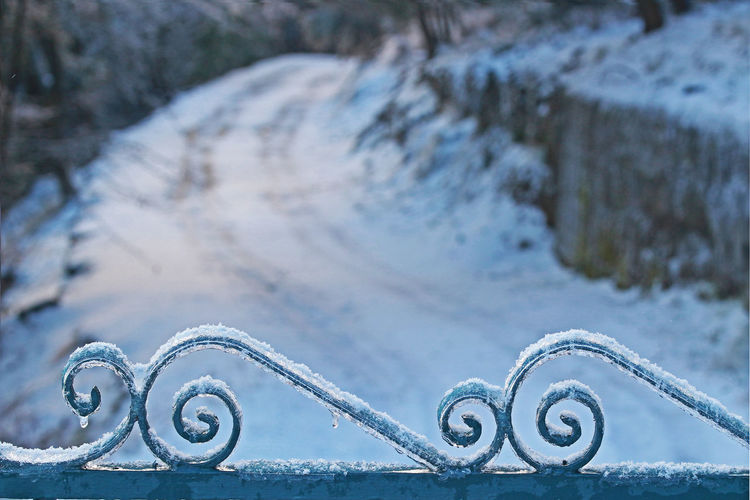 Cold Weather Gate Genoa, Italy, Europe, Liguria Genova Ice Iron Gate Path Snow ❄ Close-up Cold Cold Days Cold Temperature Cold Winter ❄⛄ Curls Day Icy Light Blue Nature No People Outdoors Pathway Snow Snowy Winter