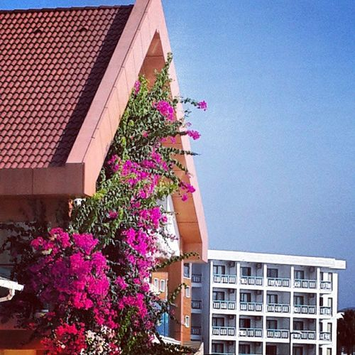 Otels Hotels Motels Seaside marmaris