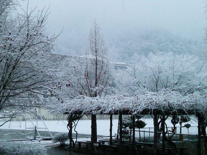 Winter 겨울 Hanil