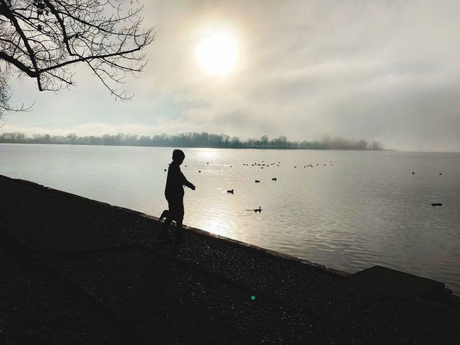 Chiemsee Bavaria Fog Water Full Length Silhouette Lake Tranquil Scene Tranquility Nature Real People