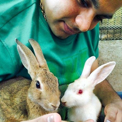 Rabbits Me AtSchool Holiday brotime dayspentwell rabbitpit
