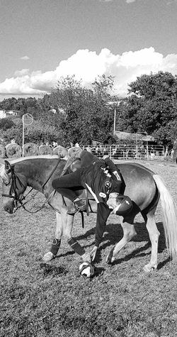 Enjoying Life Cellphone Photography Taking Photos Horseball Horserider Nature Day Countryfair Real People Domestic Animals Outdoors Blackandwhite Carousel Horse Horse Country Life People Country One Animal