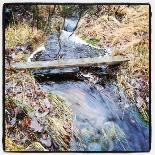 Primitiv bro som gjør jobben. Bro Flom Boraas Bridge utinaturen detgodebondeliv småbruk vann water outdoor farmlife natur creek nature høst november