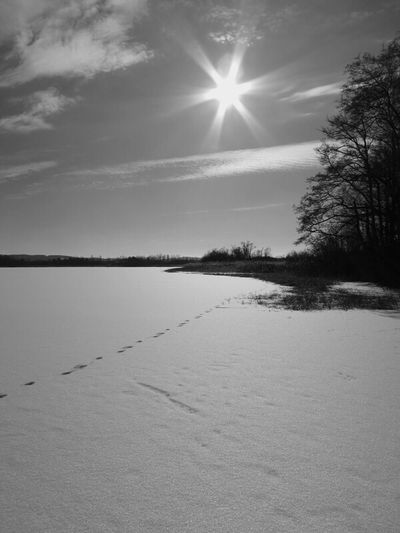 Blackandwhite Landscape Winter Spring Snow Footprints Lake The Purist (no Edit, No Filter)