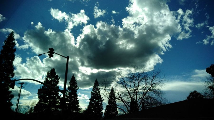 Cloud - Sky Silhouette Norcal Calisky My Cali Life Smartphone Photography From My Point Of View Smart Phone Photographer CaliLife Smartphone Photographer Nor Cal Blue Sky White Clouds Blue Sky Tranquility Sky Beauty In Nature Low Angle View No Edit/no Filter