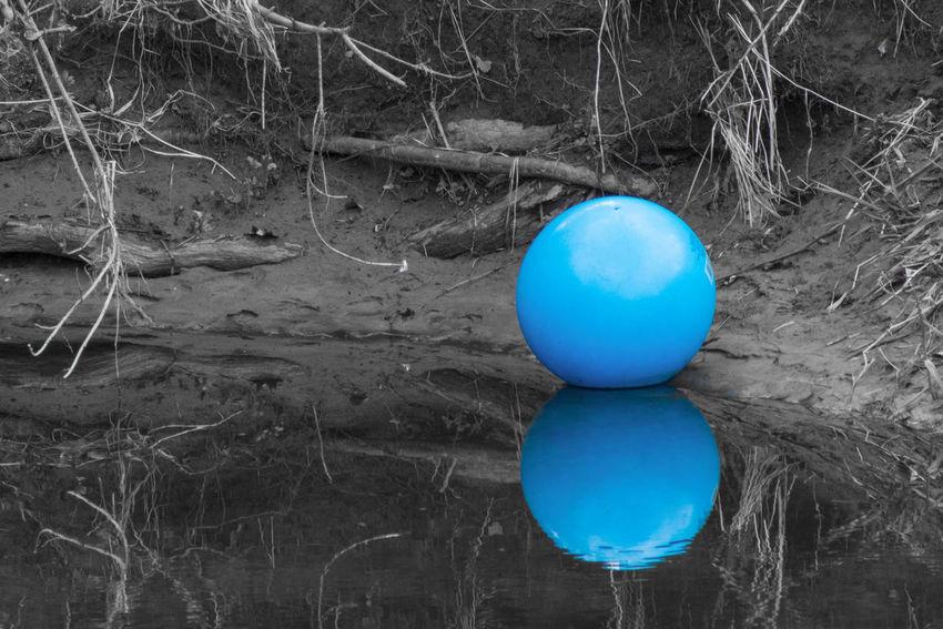 Lost Reflection Nature Lost Colorsplash