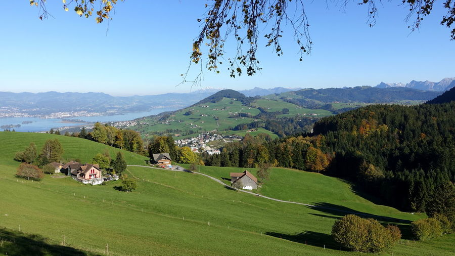 Agriculture Cityscape Field Green Color Growth Rapperswil Zürichsee Beauty In Nature Day Grass Lake Lake View Landscape Mountain Mountain Range Nature No People Outdoors Rural Scene Scenics Sky Switzerland Tranquil Scene Tranquility Travel Destinations