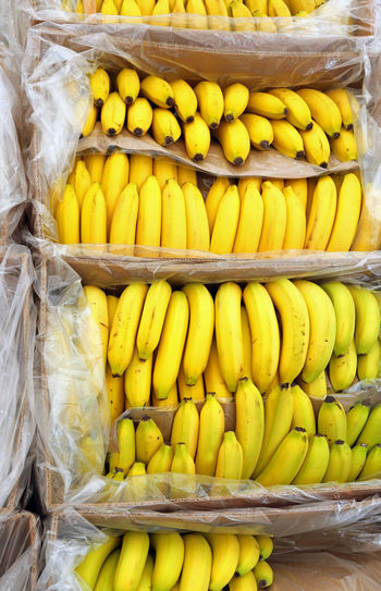 Many full boxes with ripe bananas for sale at mark