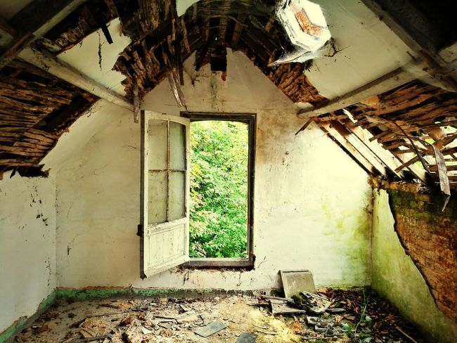Indoors  Window Abandoned House Home Interior No People Architecture Domestic Room Abandoned Places Urbex_prestigious Urbex_rebels Urbexexplorer Urbexphotography Destruction Indoors  Desolateplace Mix Yourself A Good Time Manoir Aux Statues The Week On EyeEm