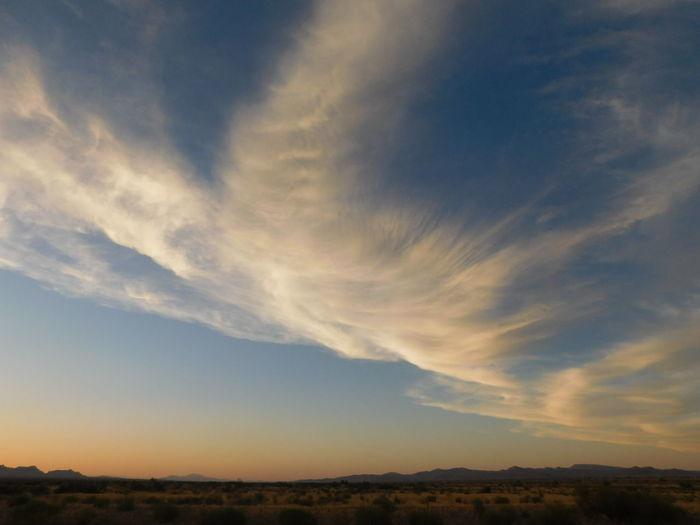 Arizona Desert Arizona Sky Arizona Sunset Beauty In Nature Cloud Cloud - Sky Cloudscape Cloudy Desert Beauty Deserts Around The World Dramatic Sky Horizon Over Land Idyllic Landscape Majestic Mountain Nature Non-urban Scene Outdoors Remote Scenics Sky Sunset Tranquil Scene Tranquility