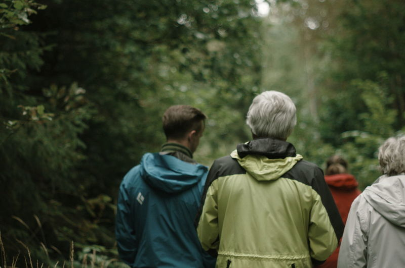 Rear view of men in forest