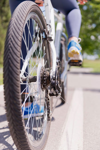 Bicycle On The Road, Rear View, Chain And Gears In Focus Bicycle Chain Biking Daytime Leg Middle Of The Road Mountain Bike Road Sport Shoes Sunny Transportation Vertical Composition Activity Bicycle Bicycle Frame Bicycle Gears Chain Day Female Gear Healthy Lifestyle Lane Outdoors Park Summer