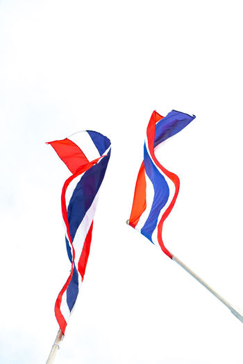 Thailand Flag on white backgrounds White Background Multi Colored No People Blue Copy Space Cut Out Flag Variation Close-up Low Angle View Environment Choice Red Sky Nature Shape Patriotism Wind Thailand Thai Flag