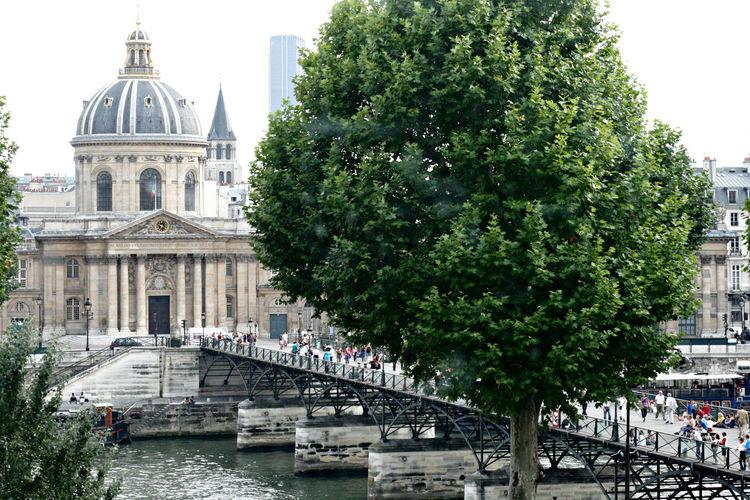 Architecture Bridge Building Exterior Built Structure City City Life Dome Mode Of Transport No People Outdoors Paris River Tree
