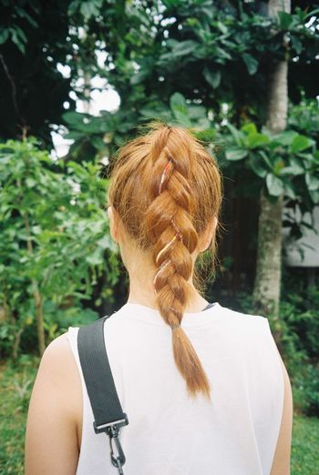 Rear View Of Woman In Braided Hair