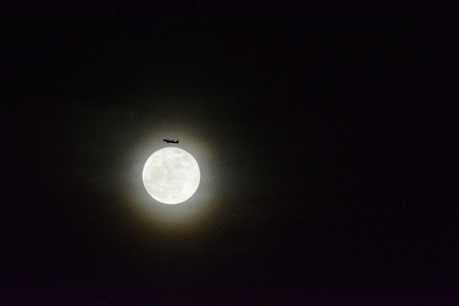 Sky Full Moon Silhouette Moonlight