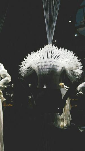 Dreamy Art Urban Fashion Wonderful Exhibition