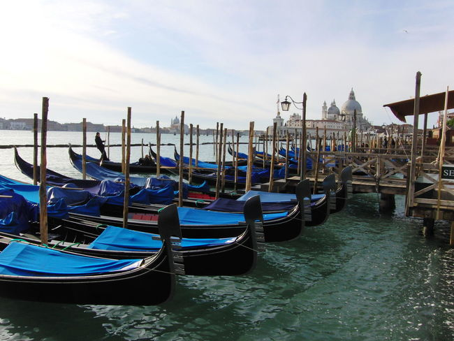 Canal Gondola Gondola - Traditional Boat Gondolas Venice In A Row Moored Transportation Travel Destinations Venice, Italy Water Waterfront