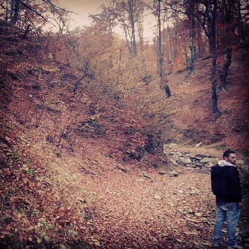 Autumninromania Autumn