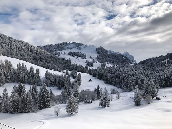 Snow Winter Cold Temperature Nature Scenics Weather Beauty In Nature Tranquility Tranquil Scene Sky Non-urban Scene Mountain Tourism No People Outdoors Day Tree Landscape Cloud - Sky
