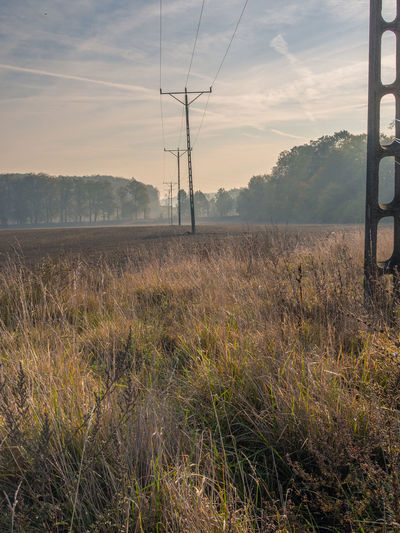 Field Landscape Plant Land Electricity Pylon Electricity  Power Line  Tranquility Sky Autumn Fall EyeEmNewHere