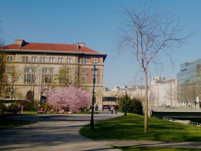 Austria Clear Sky City Architecture Outdoors Stadtpark Vienna Wien Spring Blossom Sunnyday Walkaround Iwantback