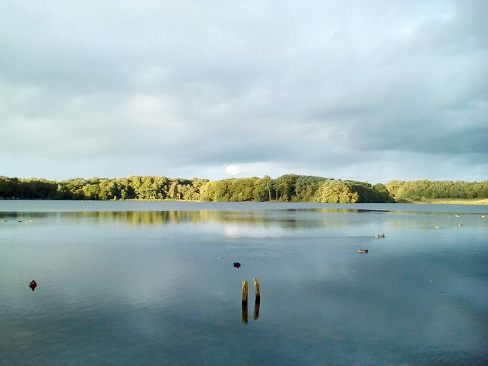Talkin Tarn Lake Reflection Nature Beauty In Nature Cloud - Sky Landscape Sky Water Tranquility Autumn Beauty In Nature Green Color No People