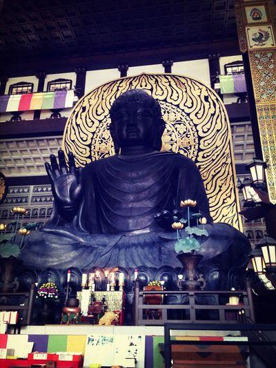 越前大仏 Greatbuddha