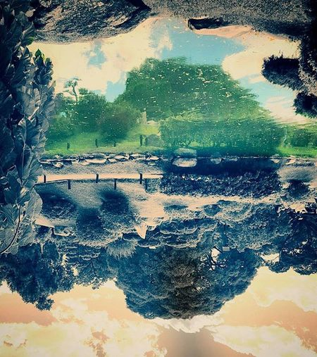 Upside down. Cuál es el reflejo? Arriba o abajo? Upsidedown Drownedworld PicsArts Art Igcapturesclub Ig_captures Colorsplash Splashoftheday Splashoftheworld Lake Reflejo Reflection Mirror Otherworld Paraleluniverse Jardinjapones Garden Sumergido Picoftheday Awesome Cool Misticayromance Wickedflip