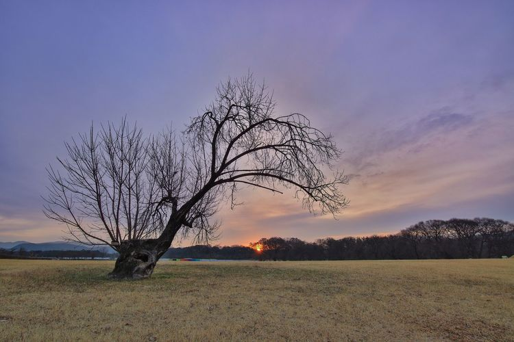 Sunrise Lonely