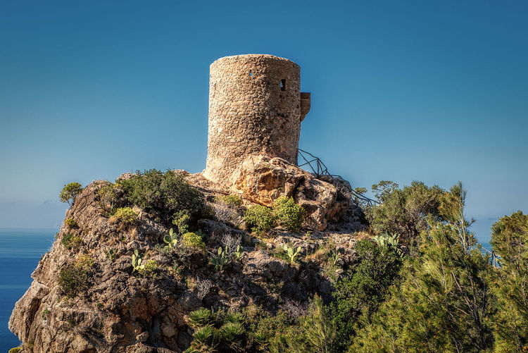 Torre des Verger Sky Blue Nature History Clear Sky Architecture Plant Day The Past No People Built Structure Low Angle View Sunlight Outdoors Ancient Old Tree Solid Growth Ancient Civilization Mallorca Viewing Tower Historical Building EyeEm Best Shots SPAIN