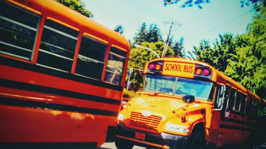 Field trip Yellow Bus  On The Bus The Journey Is The Destination Yellow Field Trip Children Summer School Bus Porn Blue Birds The OO Mission Streets In America Streetphotography Streets In Color Eyeemgetty EyeEm Best Shots EyeEm Gallery EyeEm Best Edits Eyemphotography Eyeemgallery Buses Only Schooltrip Beauty In Everyday Life Oregonexplored Fine Art Photography Adventure Club