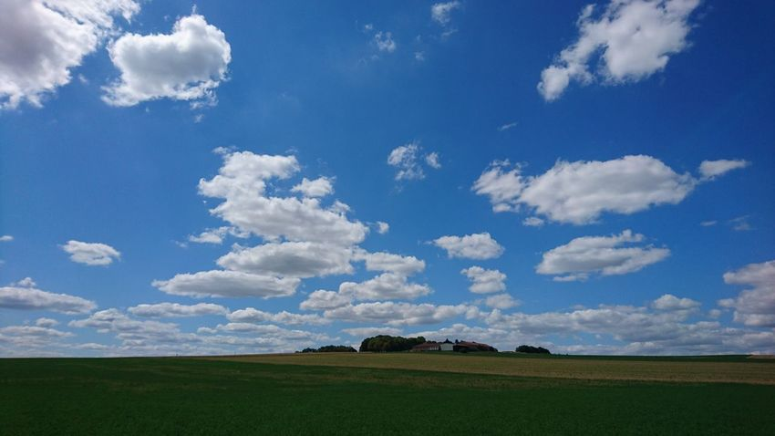 The campagne of champagne. Beautiful skies and fields in the north of France. Loving it here. Beauty In Nature Blue Campagnefrançaise Cloud - Sky Day Field Grass Landscape Nature No People Outdoors Scenics Sky Tranquil Scene