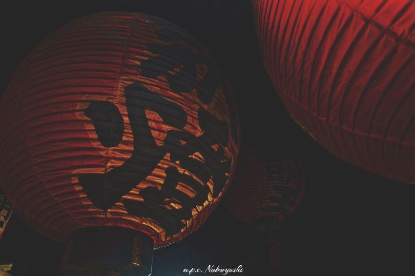 大和 提灯 神社 Shinto Shrine Fujifilm X-E2 XF14mmF2.8R Japan Fukui Paper Lanterns 日本 福井