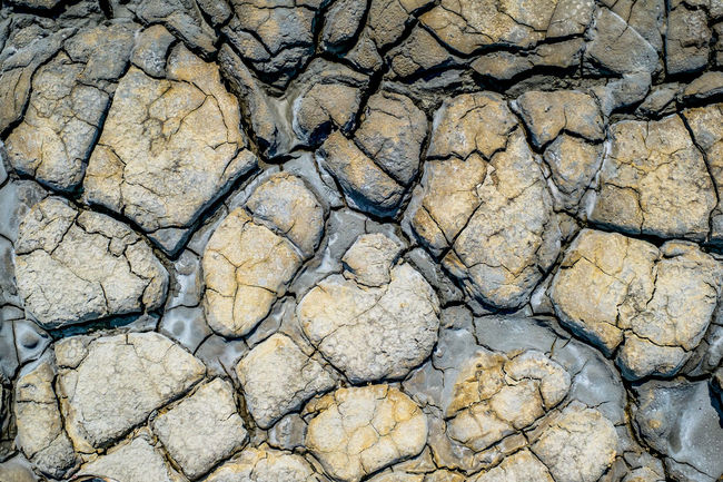 Dried earth with cracks on summer sunny day Earth Cracks Arid Climate Backgrounds Close-up Crack Cracked Cracked Earth Cracked Ground Day Dried Earth Dried Mud Drought Full Frame Geology Heat - Temperature Land Mud Nature No People Outdoors Pattern Physical Geography Textured
