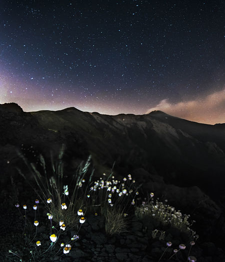 Etna Field Land Nature Nightphotography Panorama Relaxing Adventure Astronomy Flowers Landscape Mountains No People Outdoors Panoramic Photography Silence Sky Skyscraper Starrysky Stars