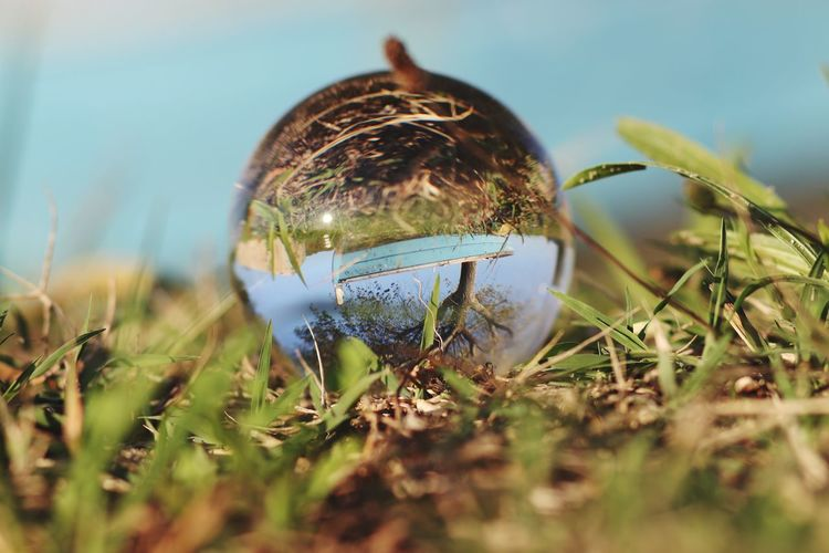 Close-up of crystal ball on field