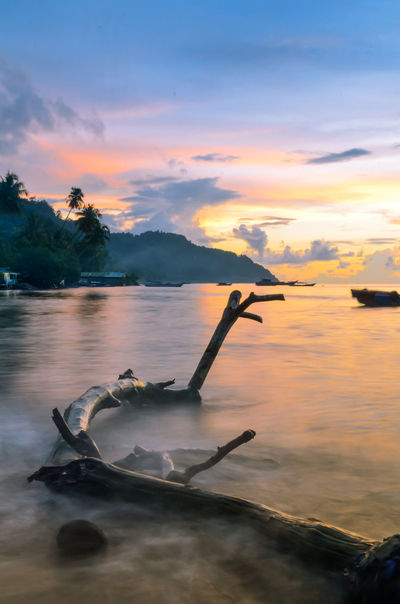 a dead tree in paradise (still alive) INDONESIA Nature Photography Beach Beauty In Nature Cloud - Sky Long Exposure Marine Nature Nautical Vessel No People Outdoors Paradise Scenics Shore Sky Sunset Tranquility Tropical Water Westsumatera