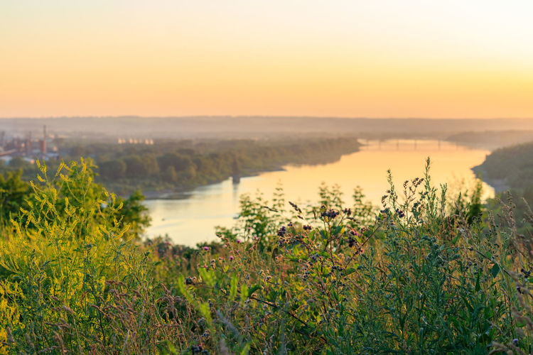 Clear Sky Flowering Plant Freshness Growth Landscape No People Orange Color Outdoors Plant River Riverscape Siberia Sky Summer Sunset Tranquil Scene Tranquility Water Yellow