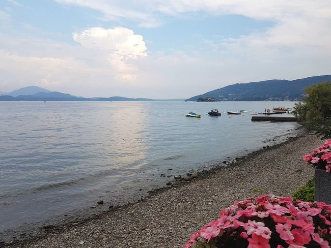 Lake beach with boats and mountains in the background, Lago Maggiore, Italy Lago Maggiore, Italy Baveno Stresa Beauty In Nature Travel Lake View Lake Tranquil Scene Water Reflections Piedmont Italy Water Beach Pebble Sky Horizon Over Water Cloud - Sky Pebble Beach Boat Calm Coastline Lakeside