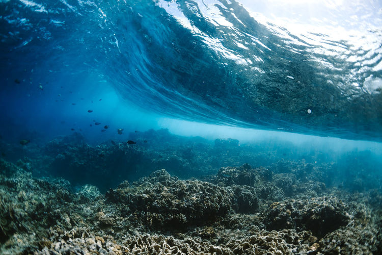 View of sea underwater