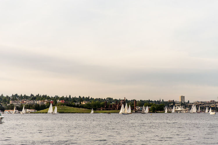 Sailboats on Lake Union for the Duck Dash. Boat Day Duck Dash Event Lake Union Outdoors Pacific Northwest  Sailboat Sailing Sea Sky Water Waterfront