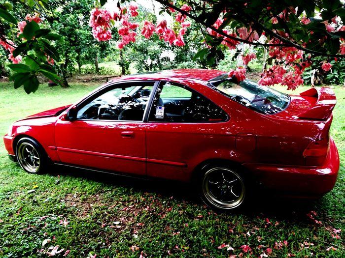 Honda Civic 97 Vtec First Eyeem Photo