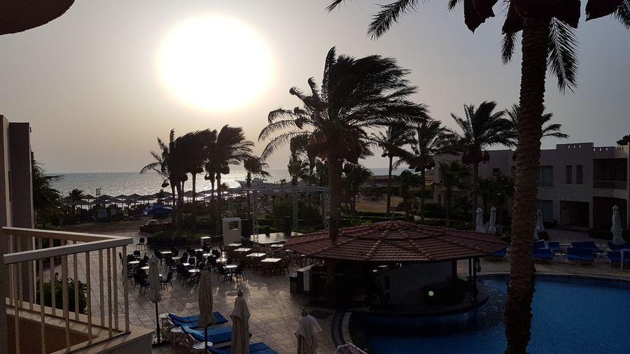 Red Sea,Hurghada,Egypt Sunrise... Wind Palm Tree Sea Sky